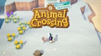 Para que serve a função melhores amigos no Animal Crossing