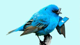Medida corretiva, conta retida e mais punições do Twitter