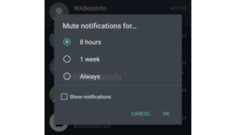 WhatsApp testa opção para silenciar grupos para sempre