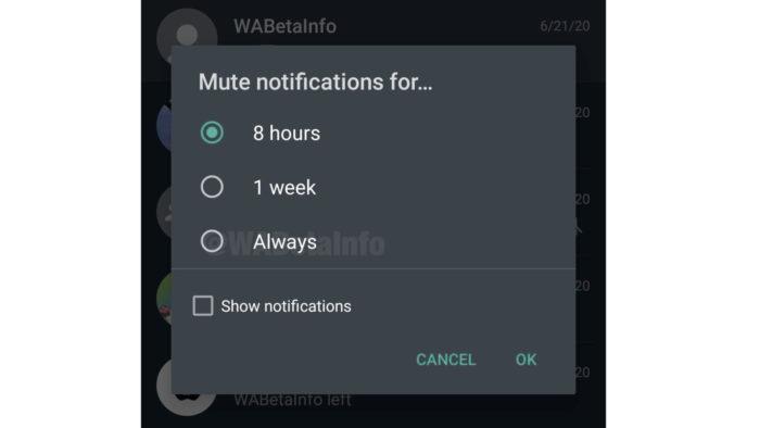 WhatsApp testa opção para silenciar notificações de grupos e pessoas para sempre (Foto: Reprodução/WABetaInfo)