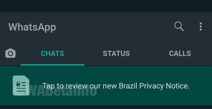 WhatsApp trabalha em nova política de privacidade para brasileiros (Foto: Reprodução/WABetaInfo)