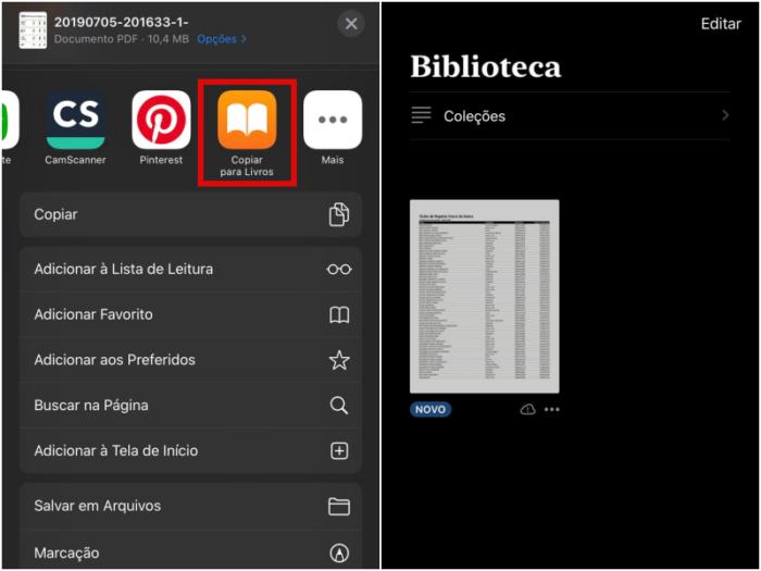 criar pdf iphone/bárbara chieregate