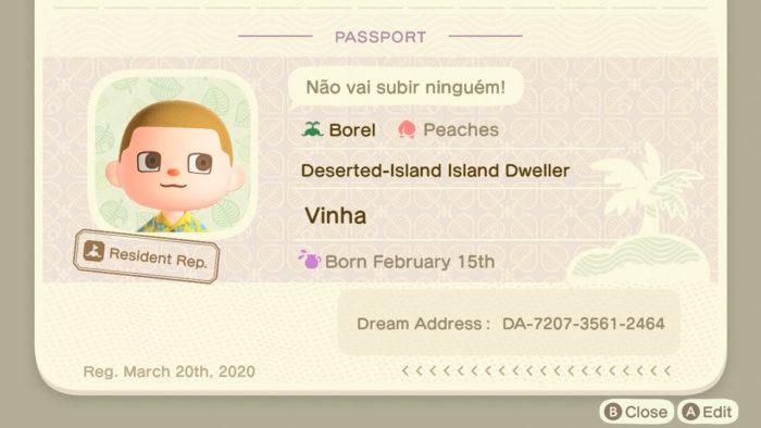 Como criar um Dream Address em Animal Crossing New Horizons / Felipe Vinha / Reprodução