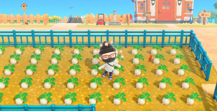 O que é turnip em Animal Crossing: New Horizons [Nabos] / Reprodução / Felipe Vinha