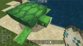 Como ter e reproduzir tartarugas no Minecraft