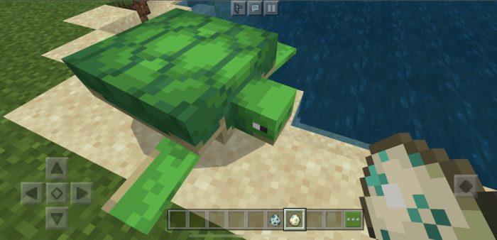 Como ter e reproduzir tartarugas no Minecraft /Reprodução / Felipe Vinha
