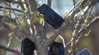 Amazon coíbe truque de entregadores que usavam celulares em árvores