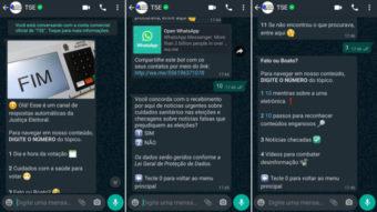WhatsApp e TSE fazem parceria contra fake news nas Eleições 2020