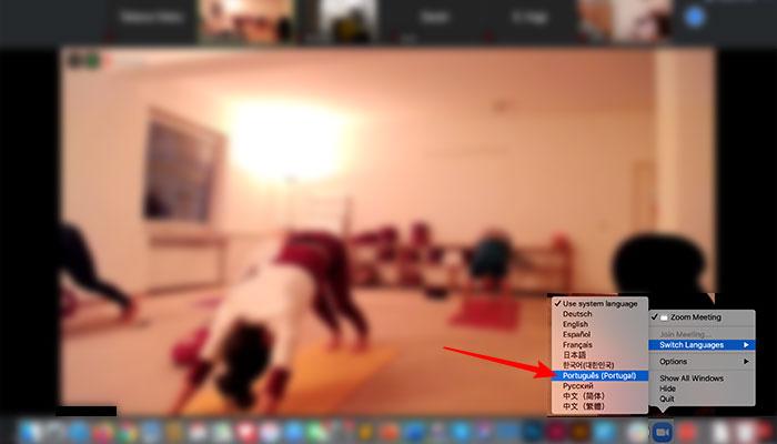 Como colocar o Zoom em português