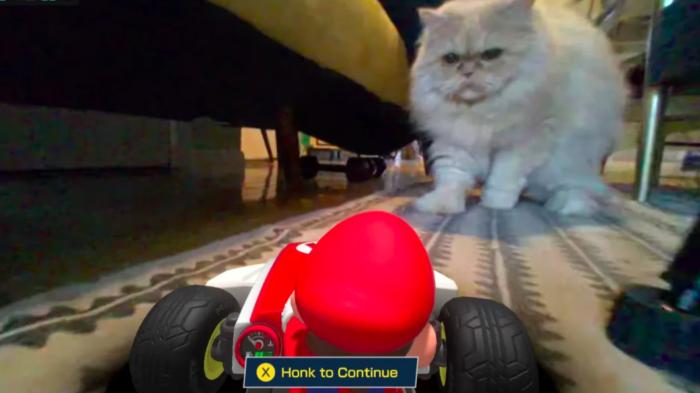 Mario Kart Live apresenta pequenos problemas com gatos (Imagem: Eurogamer/Reprodução)