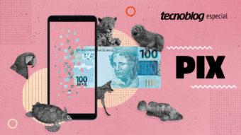 Pix: é o fim do dinheiro em espécie?