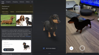 Busca do Google adiciona 50 animais 3D, incluindo zebra e girafa