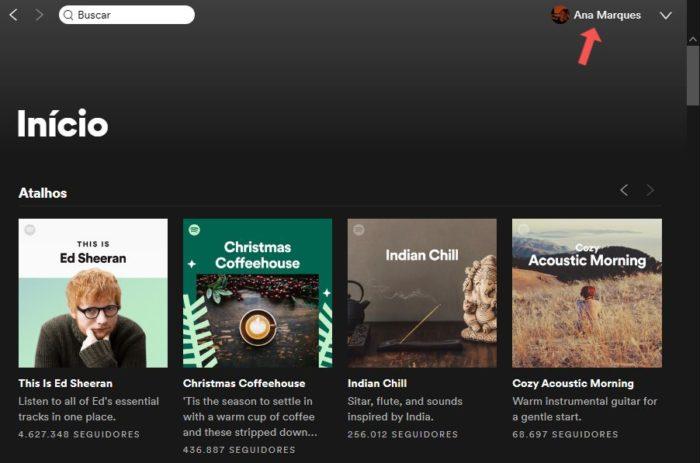 Acessando o perfil do Spotify pelo desktop