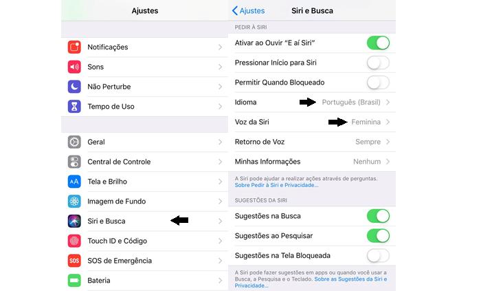 Como mudar a voz ou idioma da Siri (Imagem: Reprodução/Gabrielle Lancellotti)