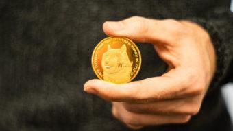 Maior dono de dogecoin acumula 28% da moeda e vira bilionário
