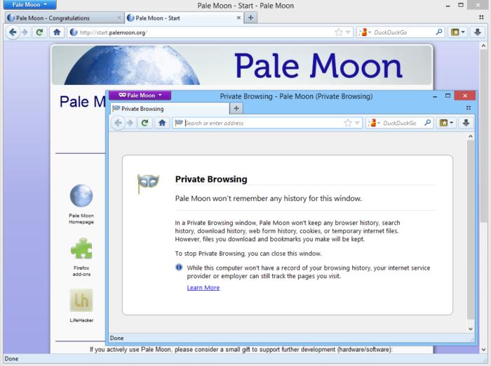 Pale Moon, navegador com suporte a Adobe Flash (Imagem: Divulgação)