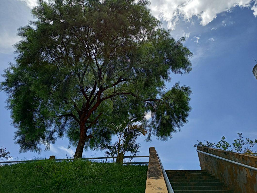 Photo taken with the Realme 7 main camera (Image: Darlan Helder / Tecnoblog)