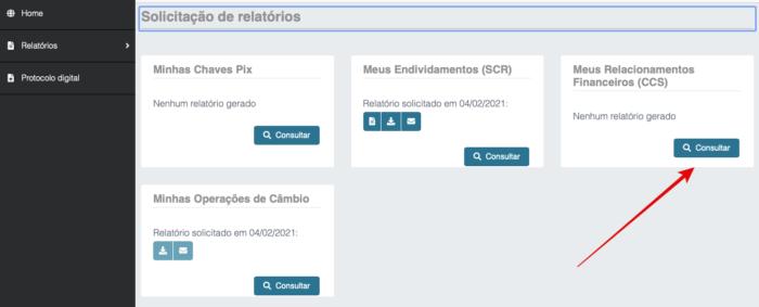 Como fazer consultas pelo Registrato (Imagem: Reprodução/Banco Central)
