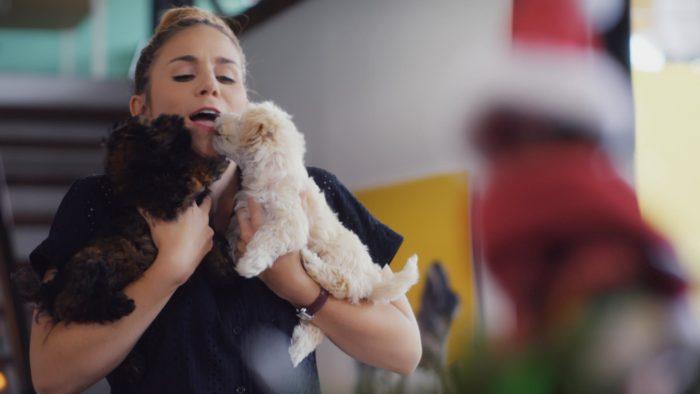 Pet Stars (Imagem: Divulgação / Netflix)