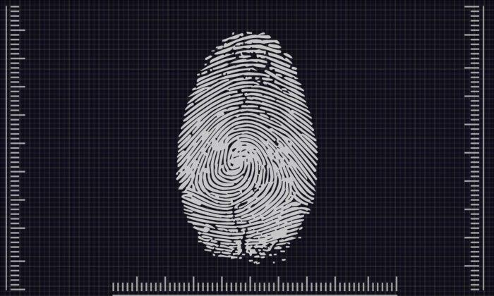 Biometria coletada pelo TSE será usada pelo governo federal