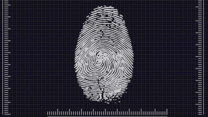 Biometria (Imagem: Pete Linforth/Pixabay)