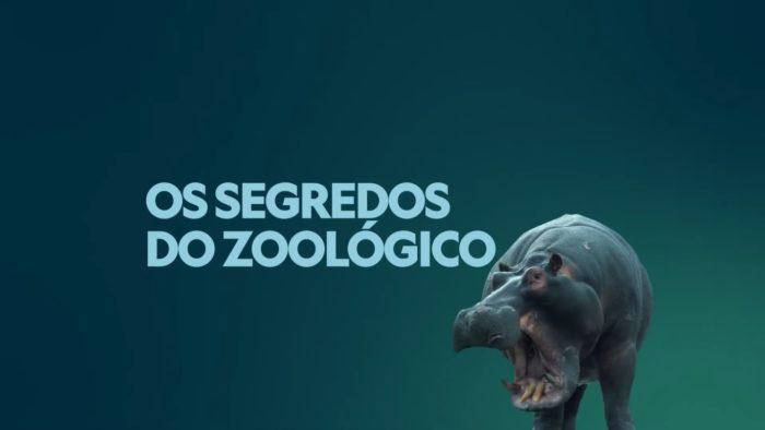 Os Segredos do Zoológico (Imagem: Divulgação/Disney)