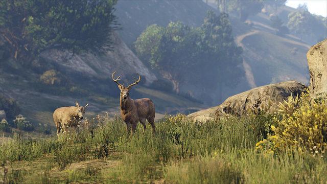 Cada animal terá alguns comandos específicos (Imagem: Divulgação / Rockstar)