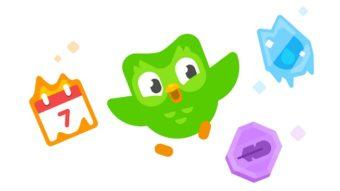 Como colocar foto no perfil do Duolingo