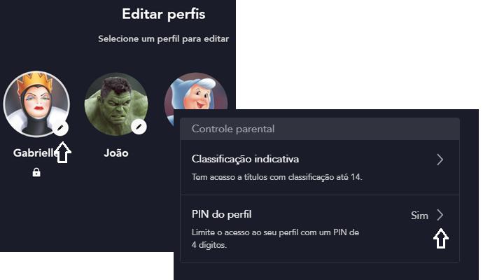 PIN no perfil (Imagem: Reprodução/Disney+)