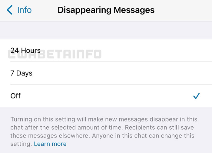 Mensagens temporárias de 24 horas no WhatsApp (Imagem: Reprodução/WABetaInfo)