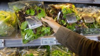 Supermercado testa preços decididos por IA para reduzir desperdício