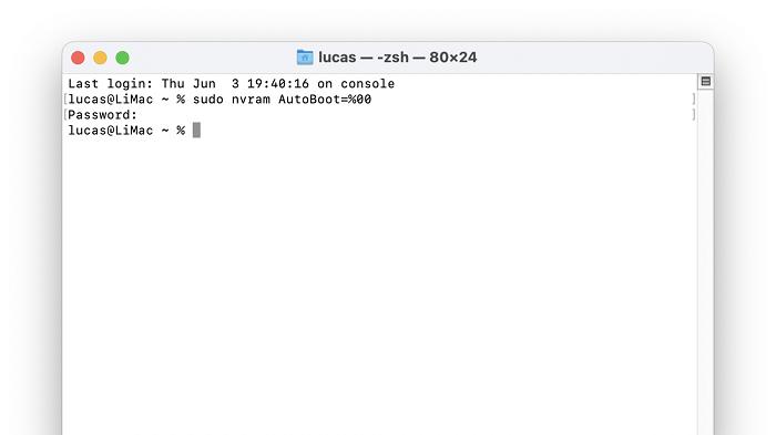 Inserindo código sintaxe no Terminal (Imagem: Lucas Lima/Reprodução)