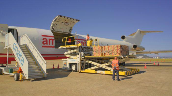Avião da Americanas (Imagem: Divulgação/Americanas)