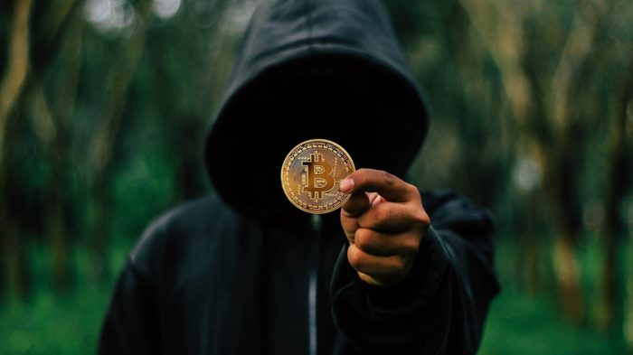 Ransomware usa criptomoedas para receber pagamentos (Imagem: Tumisu/Pixabay)