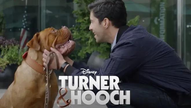 Turner & Hooch arrives in July at Disney+ (Image: Publicity/Disney)