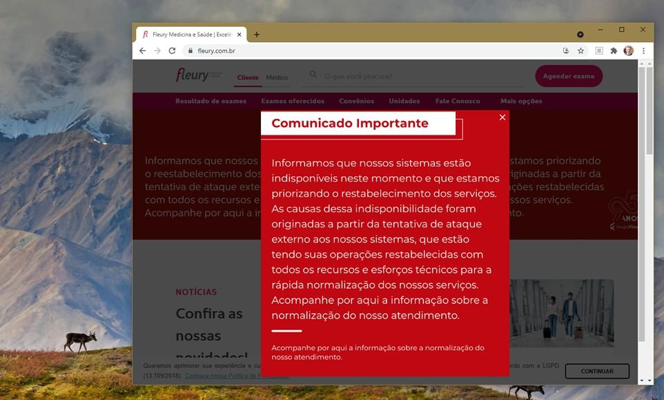 Site do Fleury mostrava aviso de sistemas indisponíveis após ataque (imagem: Emerson Alecrim/Tecnoblog)