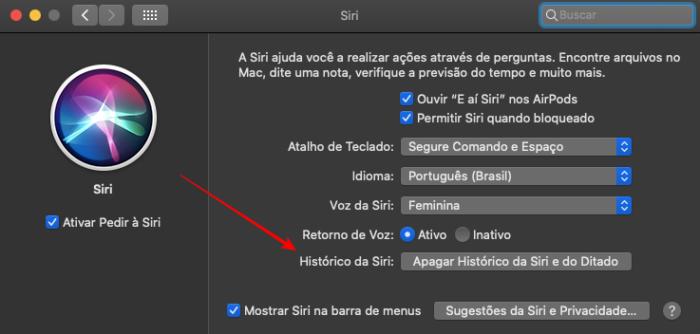 Delete o histórico no seu Mac (Imagem: Reprodução/macOS)
