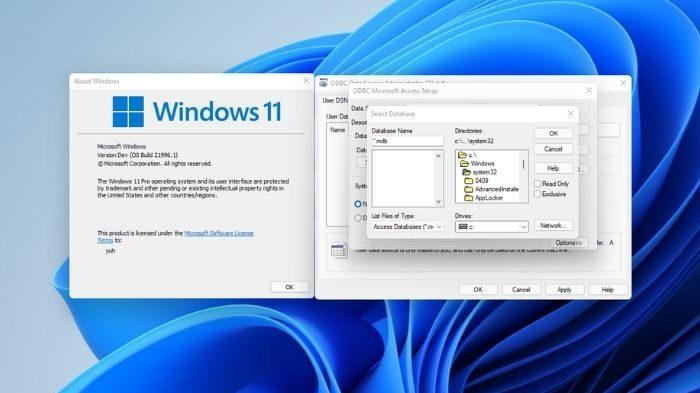 Caixas de diálogo no Windows 11 (Imagem: Reprodução/Microsoft)