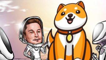 Baby doge, derivado do dogecoin, sobe 100% após tweet de Elon Musk