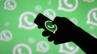 No WhatsApp, 63% dos brasileiros fogem de brigas políticas usando memes