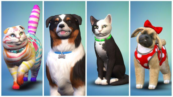 Expansão Pets