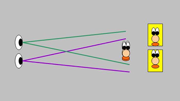 Os olhos percebem objetos em ângulos diferentes, criando a ilusão de profundidade (Imagem: Reprodução/Wikimedia Commons)
