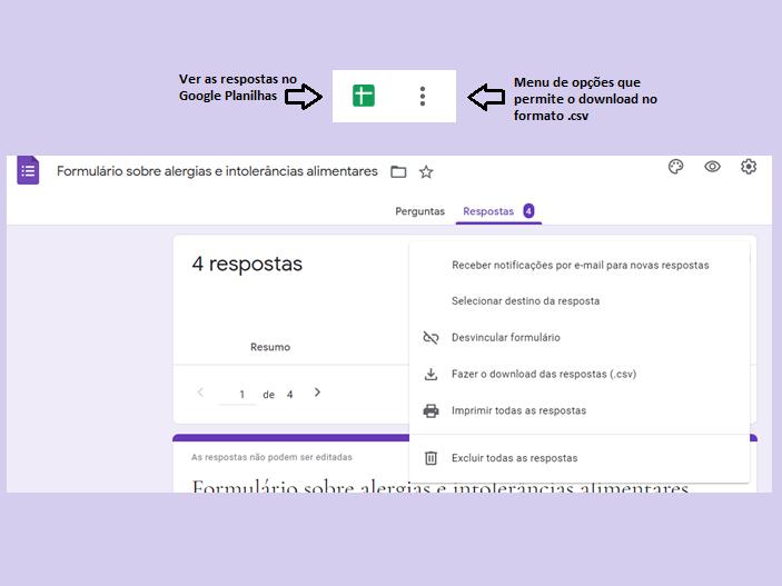 Menu de opções do Google Forms (Imagem: Reprodução/Gabrielle Lancellotti)
