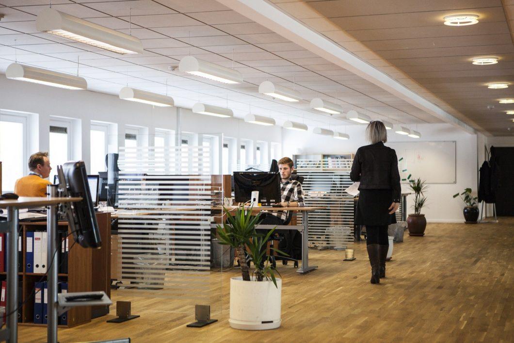 Empresas abrem mais de 670 vagas em tecnologia, marketing e outras áreas (Imagem: louisehoffmann83/Pixabay)