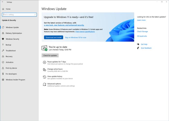 Atualização para o Windows 11 (imagem: divulgação/Microsoft)