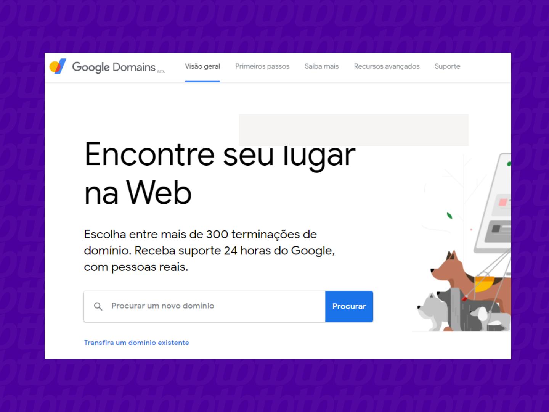 screenshot tela inicia google domains
