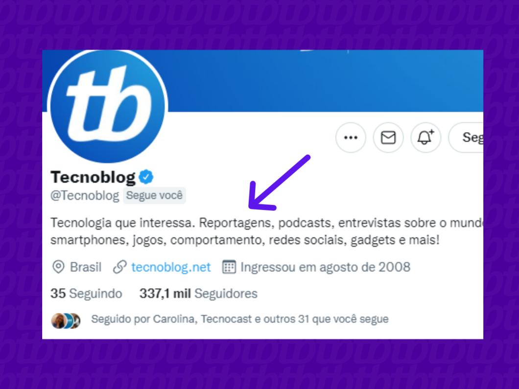 screenshot com destaque para a bio do tecnoblog no twitter